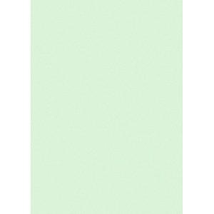 Printus Kopierpapier Color hellgrün DIN A4 80 g/qm 500 Blatt
